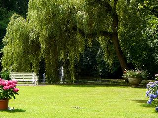 Rammenau Schlosspark 2