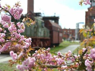 Energiefabrik Knappenrode im Fruehling
