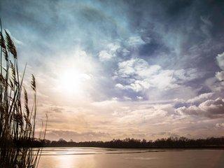 Stimmungsvolle Heide und Teichlandschaft