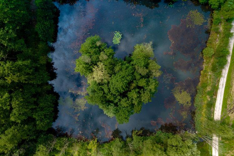 UNESCO Biophaerenreservat Heide und Teichlandschaft Luftaufnahme Torsten Kellermann