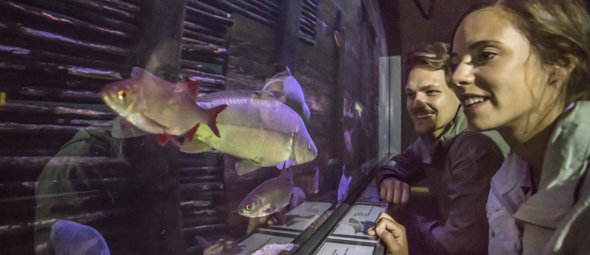 Veranstaltungshöhepunkte Der 18. Lausitzer Fischwochen