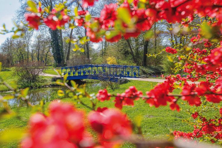 Fuchsienbrücke im Frühling René Egmont Pech
