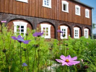 Von Neukirch bis zu den Kälbersteinen