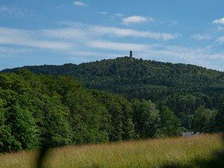 Am Hochwald