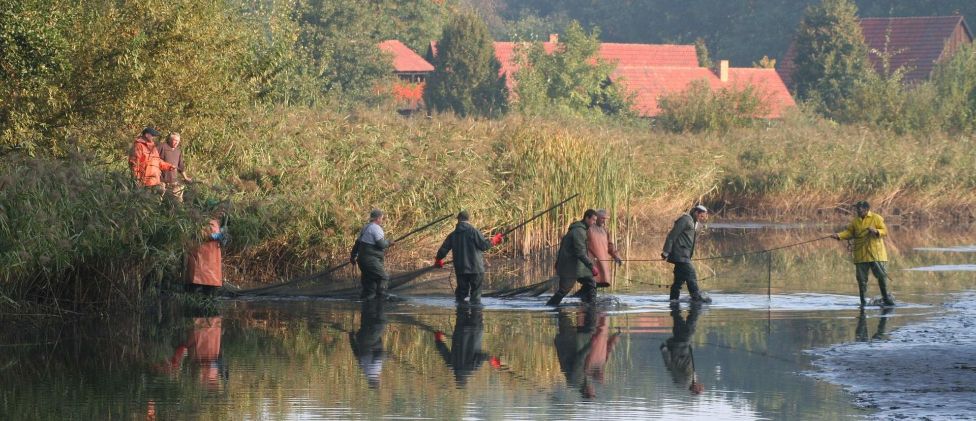 Lausitzer Fischwochen Die Teilnehmer 2020