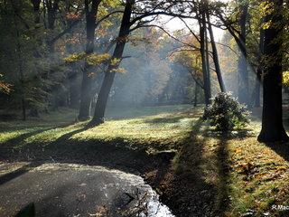 Herbst Kromlau
