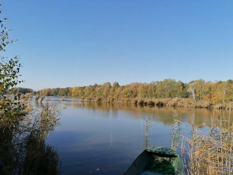 Exkursion: Dem Fischer über die Schulter geschaut