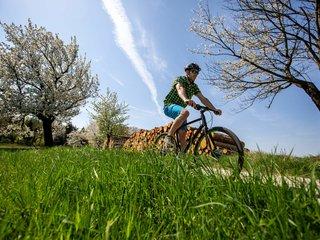 Radfahrer in Rehnsdorf