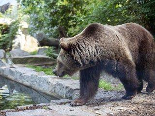Tier und Kulturpark Bischofswerda