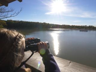 Mit dem Ranger unterwegs: Radtour ins Land der Tausend Teiche