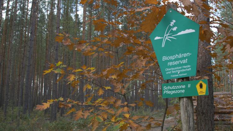 Wanderung: Herbst in den Teichen