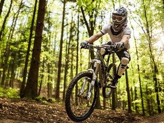 Black Mountain Bike Park Elstra